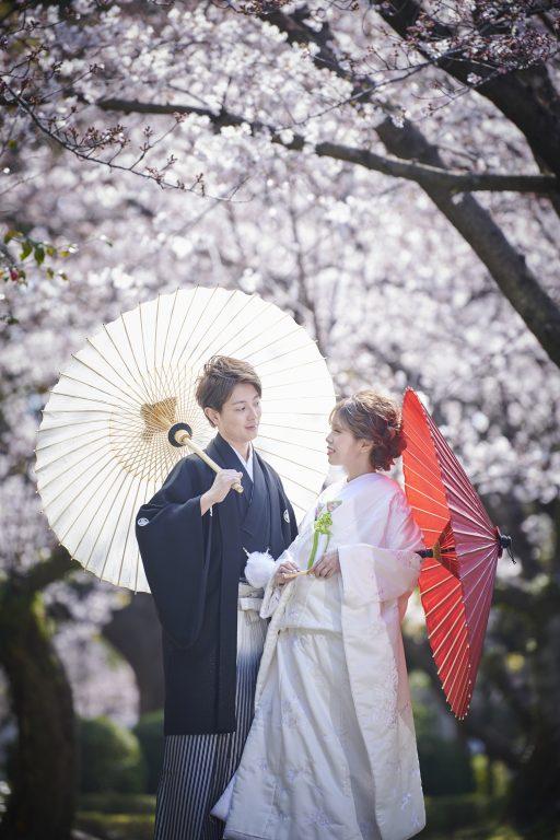 桜 打掛 白無垢